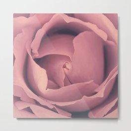 Pink Rose´s heart - roses Metal Print