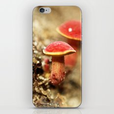Red Light Special iPhone & iPod Skin