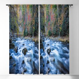 Fall in the Smokies - Autumn Colors at Laurel Creek in Smoky Mountains Blackout Curtain