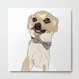 Chihuahua with Bow Tie Metal Print