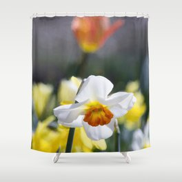 Demure Daffodil Shower Curtain