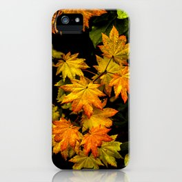 Fall Pastel iPhone Case