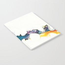 Prisoner Notebook