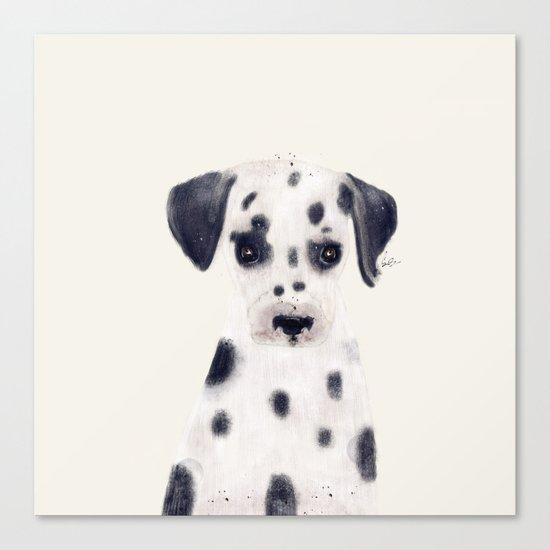 little dalmatian Canvas Print