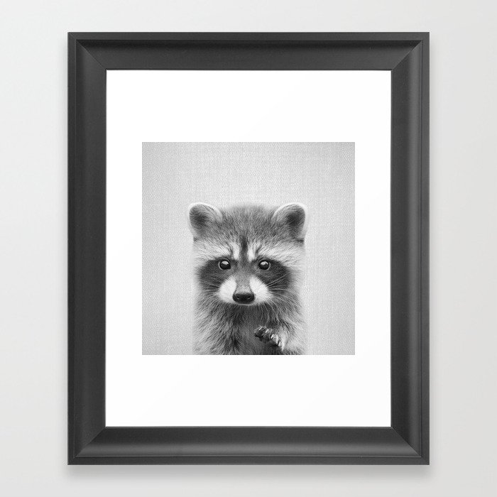 Raccoon black white framed art print