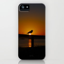 A Silhouette Of A Seagull At Dawn iPhone Case