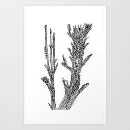 Living Things (White) Art Print