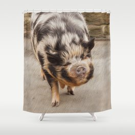 Fat pig Shower Curtain