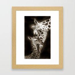 Baby Giraffe and Mother Framed Art Print