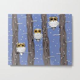 Owl birds Metal Print