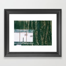 Contrast Between Indoors and The Outdoors Framed Art Print