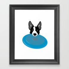 Border Collie - Disc Dog 2 Framed Art Print