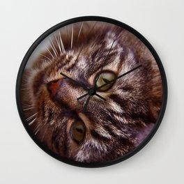 Curious Striped Cat Wall Clock
