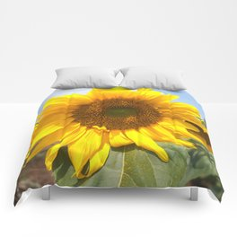 sunflower photography Comforters