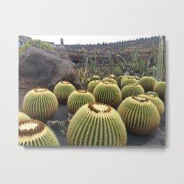 Cactus and Hugs Metal Print