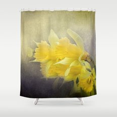 Out of the Darkness - Daffodil Flowers Shower Curtain