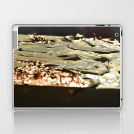 Copper Tilt Laptop & iPad Skin