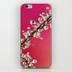 Smoking Pink Drops II iPhone & iPod Skin