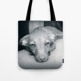 Day Dreaming Doxie Tote Bag