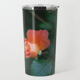Joseph's Coat Rose Matte Travel Mug