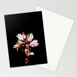Flower in Color Stationery Cards