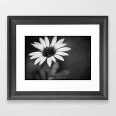 flower bw III Framed Art Print