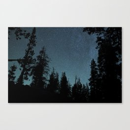 Stars and Trees Canvas Print