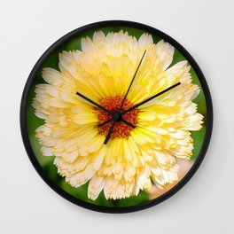 Beautiful Yellow Marigold Goldbloom Close Up  Wall Clock