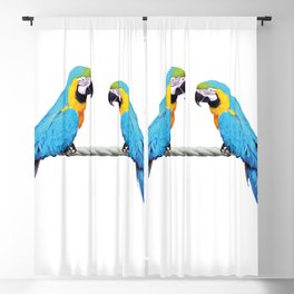 Macaw Bird sitting on rope white Blackout Curtain