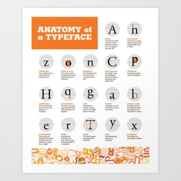 Anatomy of a Typeface Art Print