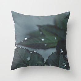 Botanical Still Life Raindrops on leaves Throw Pillow