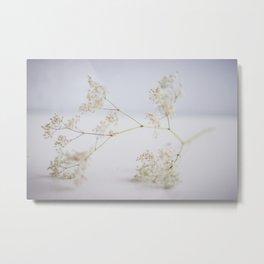 Soft flowers Metal Print
