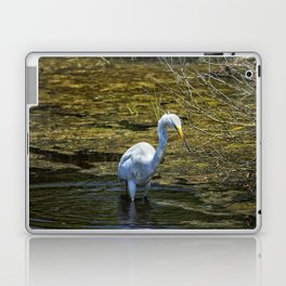 Great Egret Foraging in a Stream Laptop & iPad Skin