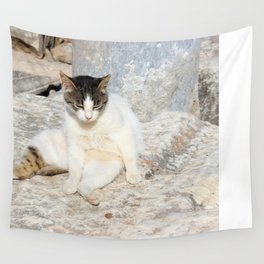 Stray Cat Straight Chilling Wall Tapestry