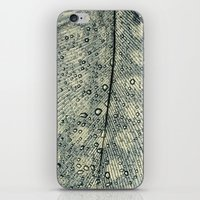 feather iPhone & iPod Skins featuring feather by Ingrid Beddoes