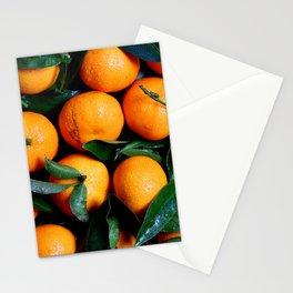 Fresh orange fruits Stationery Cards