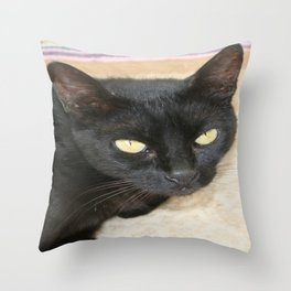 Beautiful Black Cat Portrait  Throw Pillow