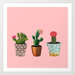 Three Cacti With Flowers On Pink Background Art Print