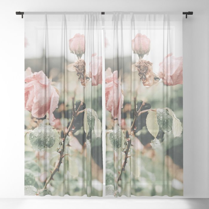 Flower Photography by Maria Curac Sheer Curtain