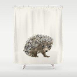 little hedgehog Shower Curtain