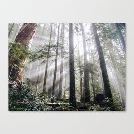 Heart of the Wild Canvas Print
