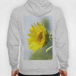 Ladybug and it's Sunflower Hoody