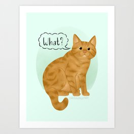 What's New Kitty Cat Art Print