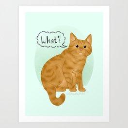 What's New Kitty Cat Art Print