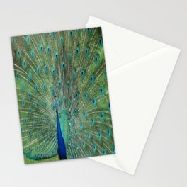 Paignton Peacock Stationery Cards