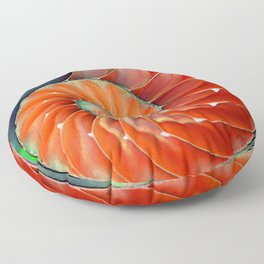 Nautilus Shell - Nature's Perfection by Sharon Cummings Floor Pillow