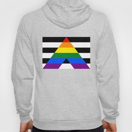 Straight Ally Flag Hoody