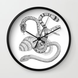 The Snake Snail Wall Clock