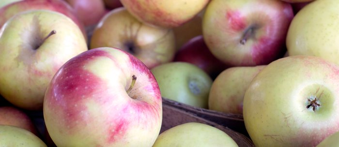 Apples To Apples Coffee Mug