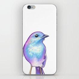 Rainbow Robin iPhone Skin